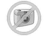 VOLKSWAGEN Golf 1.6 TDI 105 BlueMotion Technology FAP Confortline